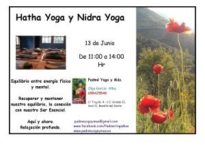 yoga_nidra_junio_2015