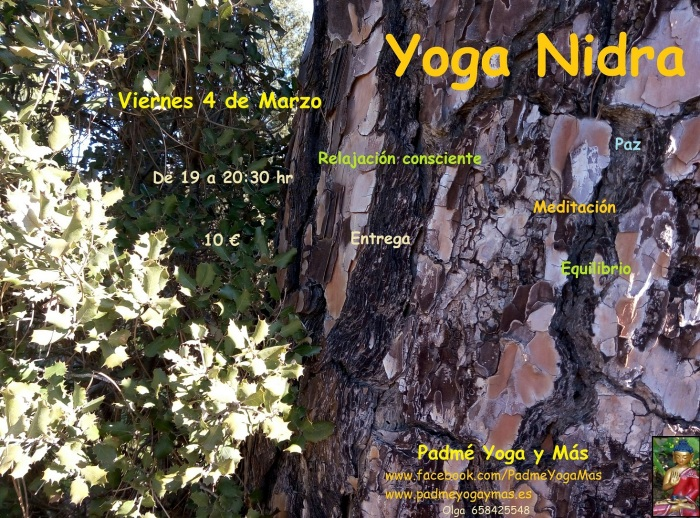 practica_yoga_nidra_marzo_2016
