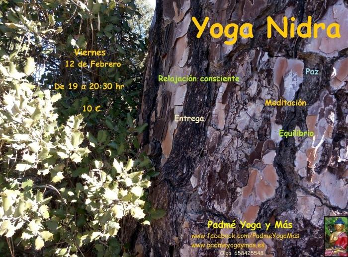 yoga_nidra_feb_2016