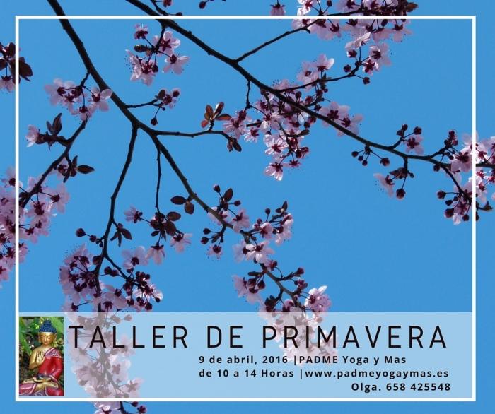 Taller_primavera_2016
