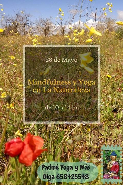 Mindfulness_y_Yoga_en_La_Naturaleza_2016