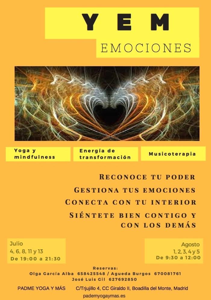 YEM_emociones_2016