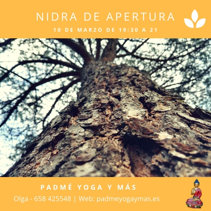 yoga_nidra_marzo_2017