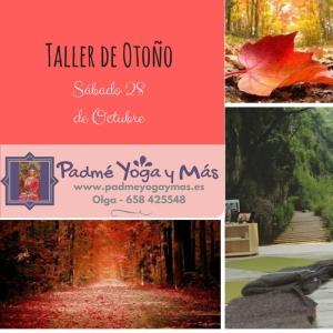 Taller_Otoño_2017