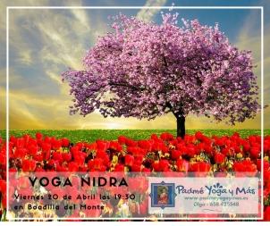 Yoga_Nidra_Abr_2018
