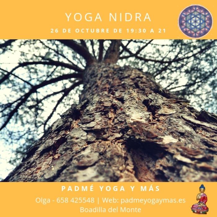 yoga_nidra_oct_2018