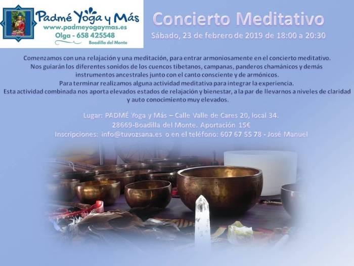 concierto_meditativo_feb_2018